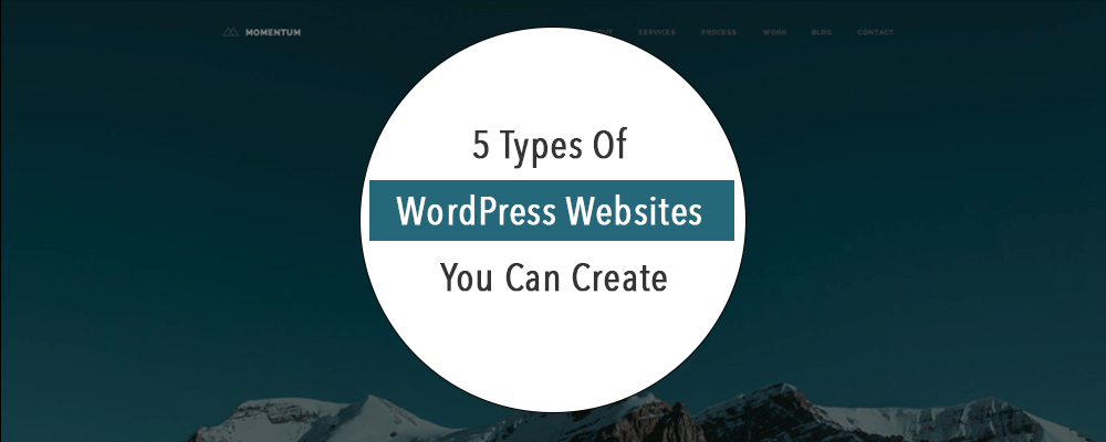 5 types of wordpress websites you can create for Websites you can draw on